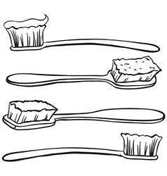 Toothbrushes vector image vector image