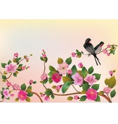 Cherry sakura postcard vector image vector image