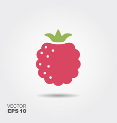 raspberry flat icon with shadow vector image