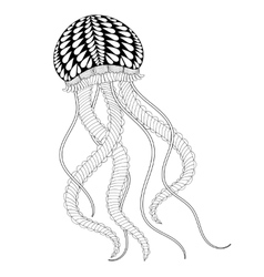 Hand drawn sea jellyfish for adult coloring pages vector