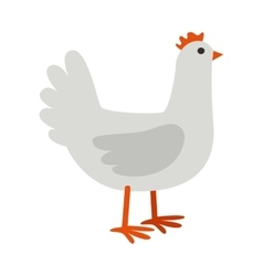 Hen flat design on white vector