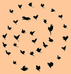 Birds and tornado vector image