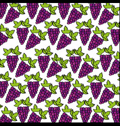 Grapes pattern fresh fruit drawing icon vector