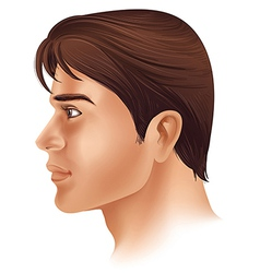 A side view of a mans face vector image