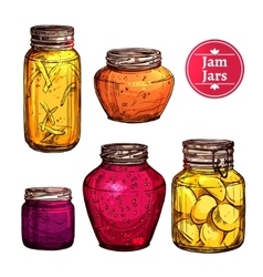 Colored jam jars vector