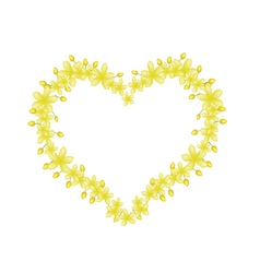 Beautiful cassia fistula flowers in heart shape vector