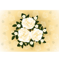 Abstract roses background vector image vector image