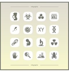 Laboratory icons set vector