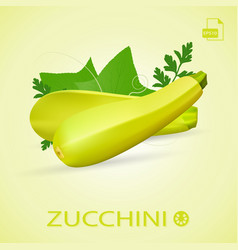 set of fresh ripe zucchini with leaves isolated on vector image