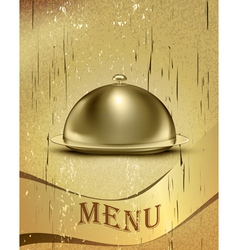 Old Catering Tray Background vector image vector image