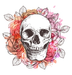 Skull and flowers sketch with watercolor effect vector