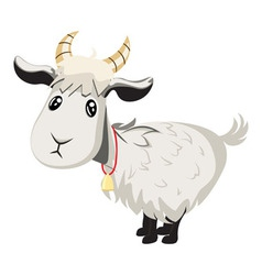 Cute goat vector