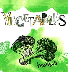 Set of engraving of broccoli slice on white vector