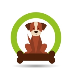 Pet care concept design vector