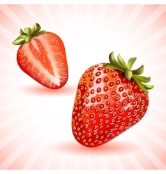 Red fresh strawberries vector image
