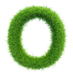 Capital letter o from grass on white vector