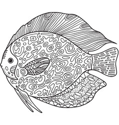 doodle zentangle fish coloring page with animal vector image