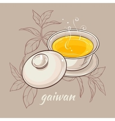 gaiwan on brown background vector image