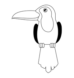 toucan line icon vector image