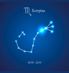 zodiac constellation scorpius the scorpion vector image