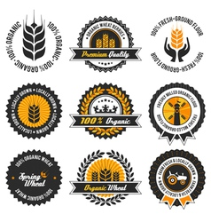Organic wheat label set vector