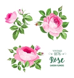 The flowers set vector
