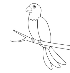 Parrot line icon vector