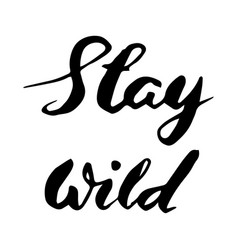 Stay wild hand written lettering vector