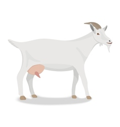Goat standing up isolated on a white background vector