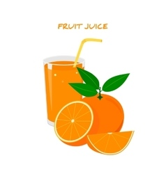 Fresh Orange Juice in a Glass vector image