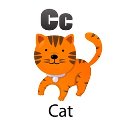 Alphabet c with cat vector
