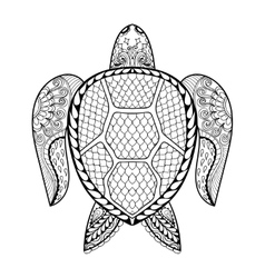 Hand drawn sea turtle for adult coloring pages in vector