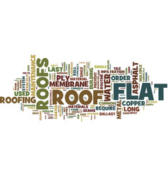 Flat roofs text background word cloud concept vector
