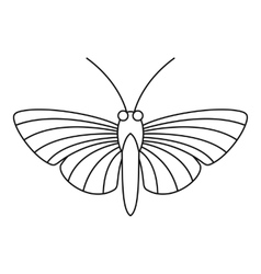 Hawk moth butterfly icon outline style vector
