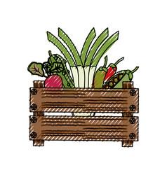 Vegetables in wooden box vector