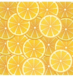 Orange slices background2 vector