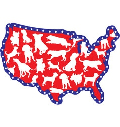 us map and dogs vector image