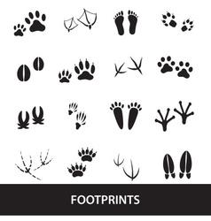 basic animal footprints set eps10 vector image vector image