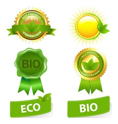 eco friendly set vector image