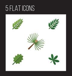 flat icon nature set of alder rosemary acacia vector image
