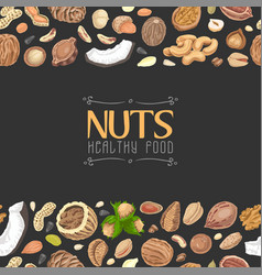 Horizontal seamless background with colored nuts vector