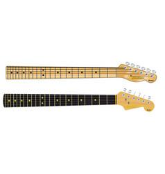 Single coil guitar necks vector