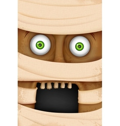 Face of mummy vector