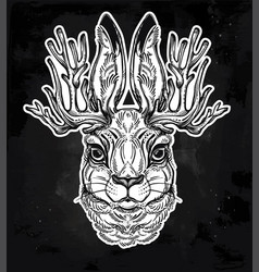 jacalope magical creature portrait art vector image vector image