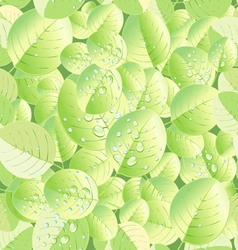 texture of green leaf vector image