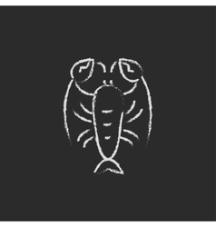 Lobster icon drawn in chalk vector