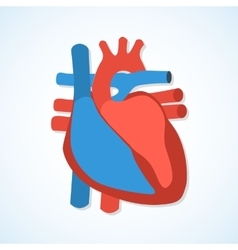 Flat design icons of human heart vector