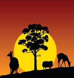 animal in the nature color vector image