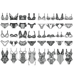 Collection of lingerie panty and bra set body vector