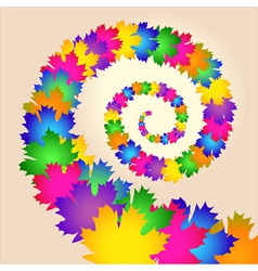 Maple colorful leaves swirl vector image vector image